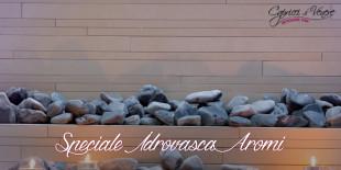 i-capricci-di-venere-Trattamento-Aromi-idrovasca